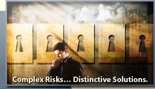 Complex Risks... Distinctive Solutions